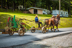 Trazione dell'aratro sulla strada con i cavalli Immagine Stock