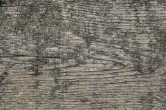 Träbakgrund för lantlig grunge Arkivbilder