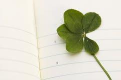 Trébol de cinco hojas y nuevo día. Foto de archivo