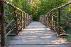 Träbro i en park Arkivfoton