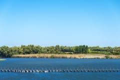 Träbro som korsar en flod, Sardinia, Italien Royaltyfri Foto