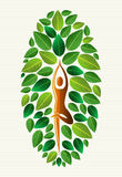 Träd för Indien yogablad Arkivbild