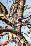 Träd som dekoreras med stickade plagg Arkivbild