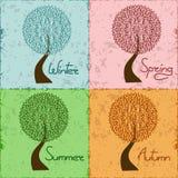 Trädet i säsong fyra - övervintra, fjädra, sommar, autu Arkivfoton