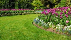 Trädgård med en färgglad blomsterrabatt och gräsgräsmatta Arkivbilder