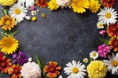 Trädgårdblommor över stentabellbakgrund Fotografering för Bildbyråer