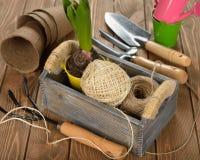 trädgårds- arbeta i trädgården springtimehjälpmedel Arkivbild