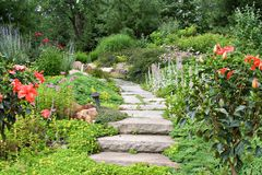 trädgårds- bana Arkivfoton
