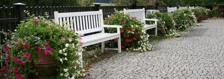 Trädgårds- bänkar Royaltyfri Foto