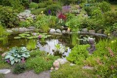 trädgårds- damm Arkivbild