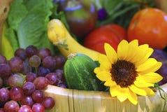 trädgårds- grönsaker för korg Arkivfoton