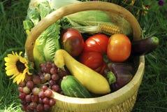 trädgårds- grönsaker för korg Arkivfoto