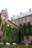 trädgårds- rotterdam townhall Royaltyfria Bilder