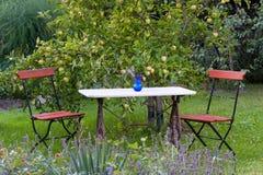 Metallstolar : Blåa trädgårds metallstolar arkivfoton bild