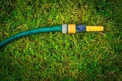 Trädgårds- vattenslang som arbeta i trädgården hobbybegrepp Royaltyfri Bild