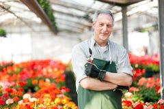Trädgårdsmästare i ett grönt hus Arkivbild