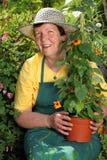 trädgårdsmästarepensionärkvinna Royaltyfri Bild