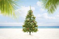 Treу de Navidad Imagen de archivo libre de regalías