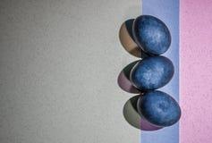 Tre ägg för blåttfärgpåsk på en bakgrund för tre färg Fotografering för Bildbyråer