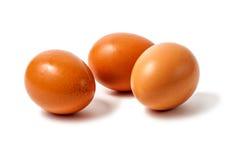 Tre ägg på den vita bakgrunden Arkivbilder