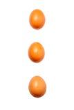 Tre ägg på den vita bakgrunden Royaltyfri Fotografi
