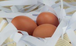 Tre ägg på korg Arkivfoton