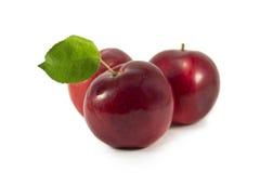 Tre äpplen Royaltyfria Foton