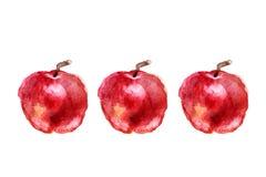 Tre äpplen målade vattenfärgen Royaltyfri Fotografi