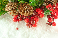 tre шерсти рождества ветви ягод Стоковое Фото