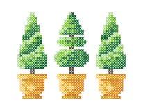 Tre alberi di Natale in un vaso Cartolina d'auguri di Buon Natale, illustrazione del buon anno Gli alberi di Natale gradiscono il royalty illustrazione gratis