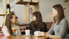 Tre amiche delle donne in un caffè sono parlanti e beventi le loro bevande stock footage