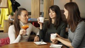 Tre amiche stanno incontrando in caffè Bevande beventi e parlarsi stock footage