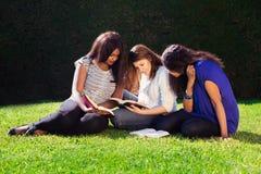Tre amici che studiano insieme in natura Fotografia Stock