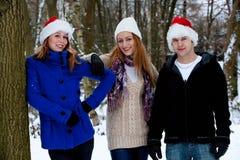 Tre amici nell'orario invernale Fotografie Stock Libere da Diritti