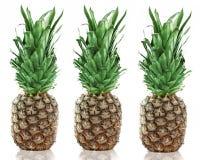 Tre ananas Fotografia Stock Libera da Diritti