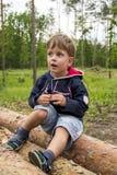 Tre anni svegli di ragazzo nella foresta sui ceppi Immagine Stock