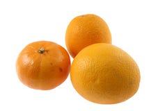 Tre apelsiner Royaltyfria Bilder