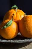 Tre apelsiner som ligger på en gammal metallkaka, står Royaltyfria Bilder