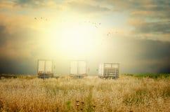 Tre automobili del carico sono parcheggiate nel campo rurale di autunno Fotografia Stock Libera da Diritti