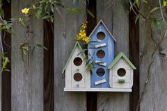 Tre aviari variopinti sul recinto di legno immagine stock libera da diritti
