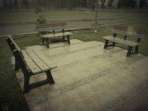 Tre bänkar i gräsmatta av parkerar Arkivbild