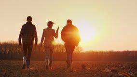 Tre bönder går framåt på ett plogat fält på solnedgången Ungt lag av bönder royaltyfri foto