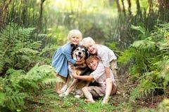 Tre bambini felici Lovinglt che abbraccia il cane di animale domestico nella foresta immagine stock