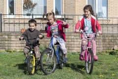 Tre bambini sulle biciclette Un ritratto di tre piccoli ciclisti che guidano le loro bici Tre bambini sul giro del ciclo in campa Fotografia Stock