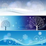 Tre bandiere di inverno Fotografia Stock Libera da Diritti