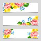Tre bandiere floreali Fotografia Stock Libera da Diritti