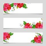 Tre bandiere floreali Immagine Stock
