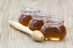 Tre barattoli di miele e del merlo acquaiolo del miele Immagine Stock