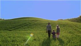 Tre barn går vid den gröna ängen på en bakgrund för blå himmel lager videofilmer