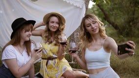 Tre bei, donne moderne che si siedono su un'erba con i vetri di vino rosso Una ragazza bionda che prende un selfie con lei video d archivio